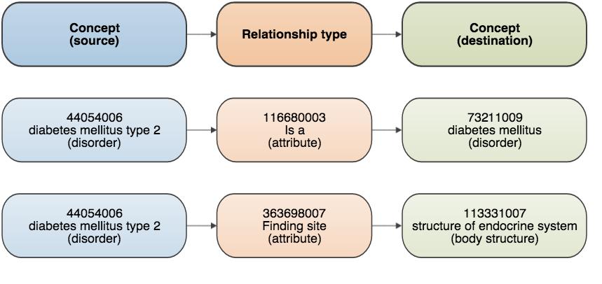 5  SNOMED CT Logical Model - SNOMED CT Starter Guide